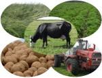 5 неординарных бизнес идей в агробизнесе