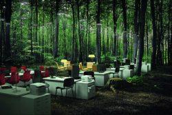 Креативная бизнес-идея: открываем офис в лесу