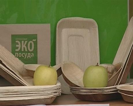 Экологический бизнес: производство бумажной одноразовой посуды - Бизнес журнал