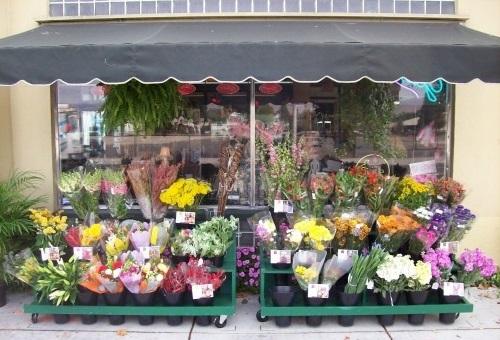 цветочный павильон, бизнес в фото, бизнес идеи, свое дело, франшиза, как заработать денег, малый бизнес, идеи малого бизнеса, бизнес на дому, бизнес план, бизнес с нуля