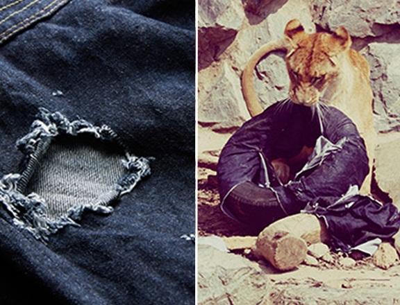 Оригинальные джинсы с диким характером Zoo jeans