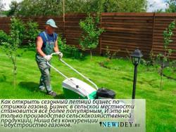 Как открыть сезонный летний бизнес по стрижки газона