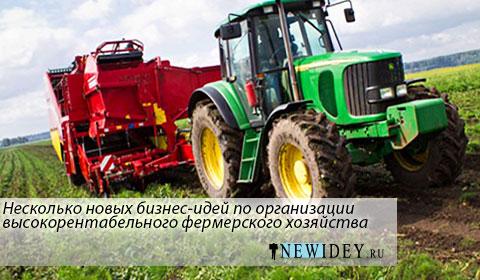 Несколько новых бизнес идей по организации высокорентабельного фермерского хозяйства