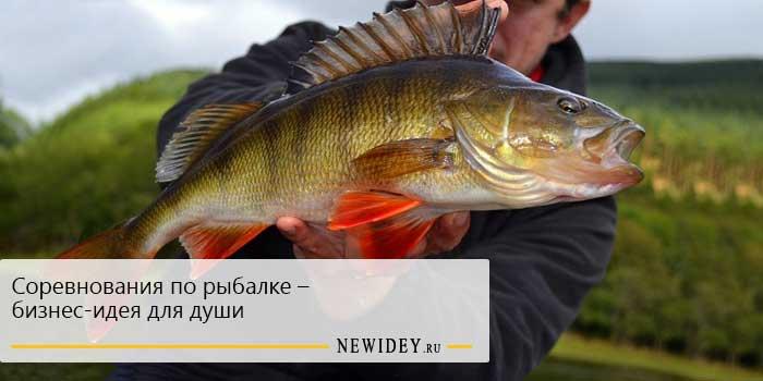 Соревнования по рыбалке – бизнес-идея для души