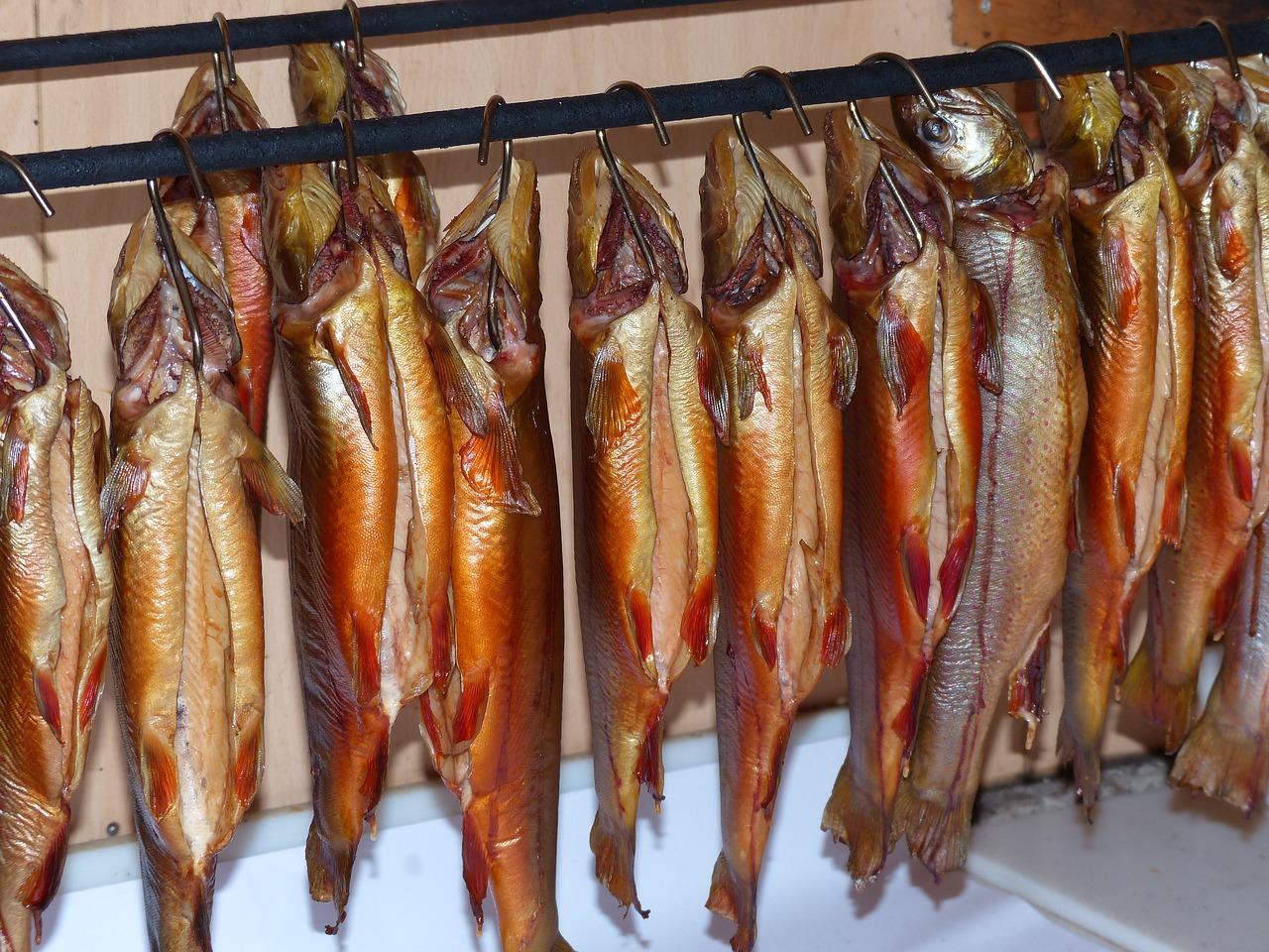 Домашнее копчение рыбы для будущих заработков