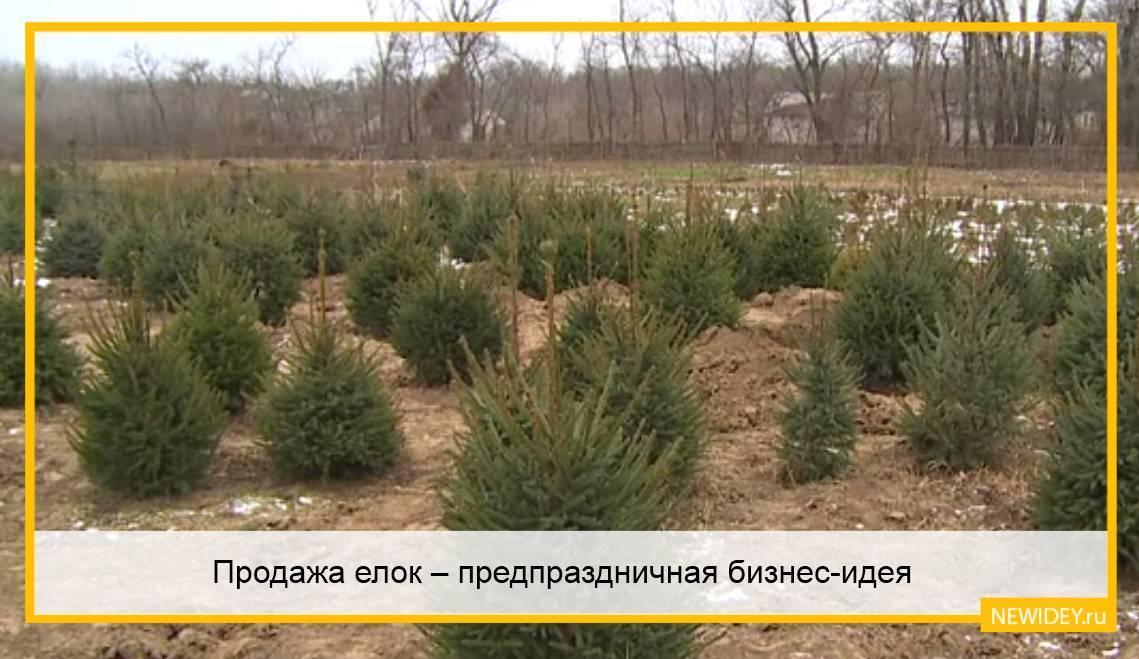 продажа искусственных елок